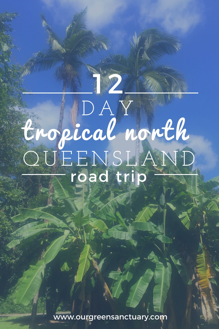 12 Day Tropical North Queensland Rainforest Road Trip