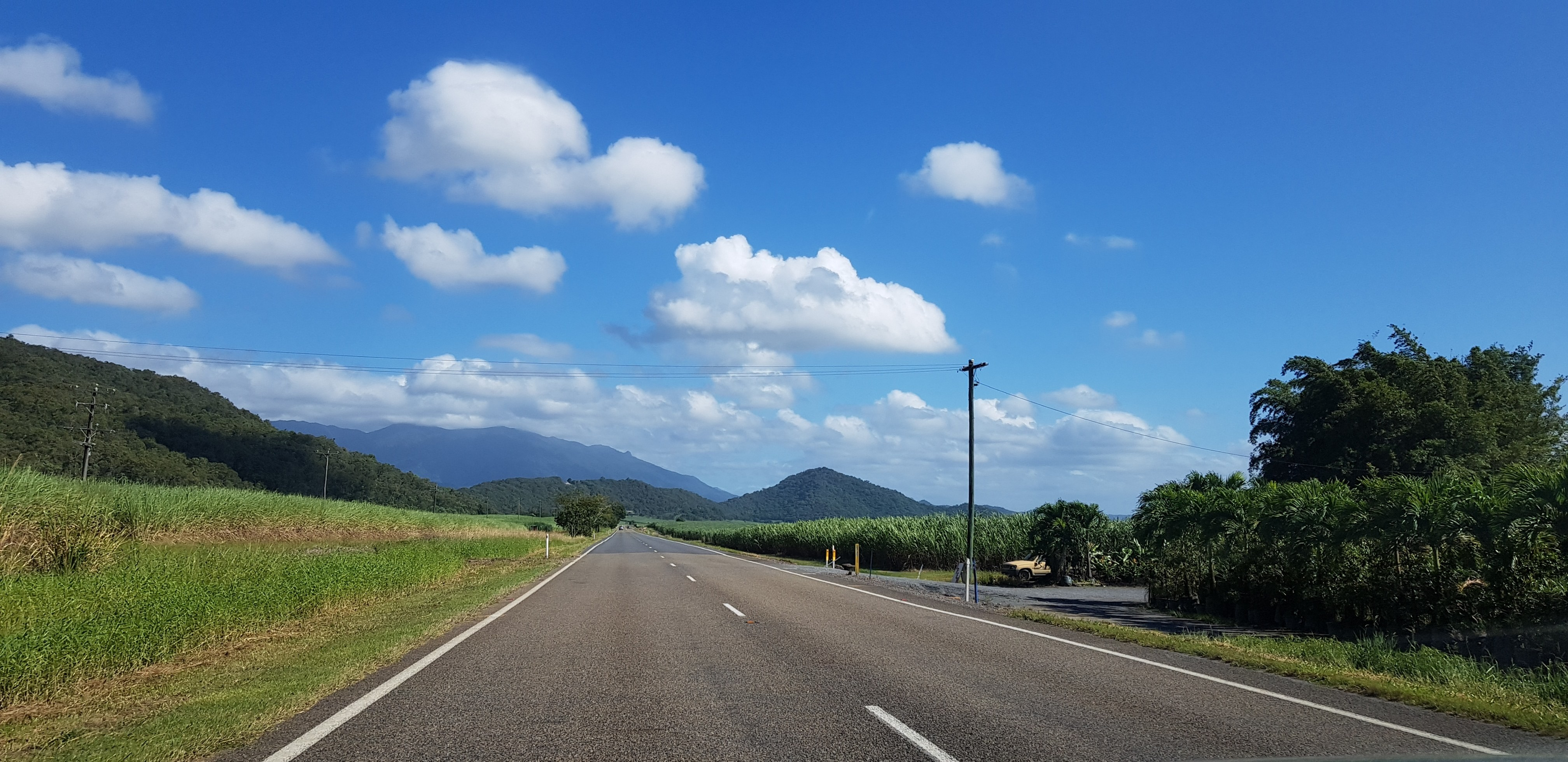 The road to the Daintree river cruise centre