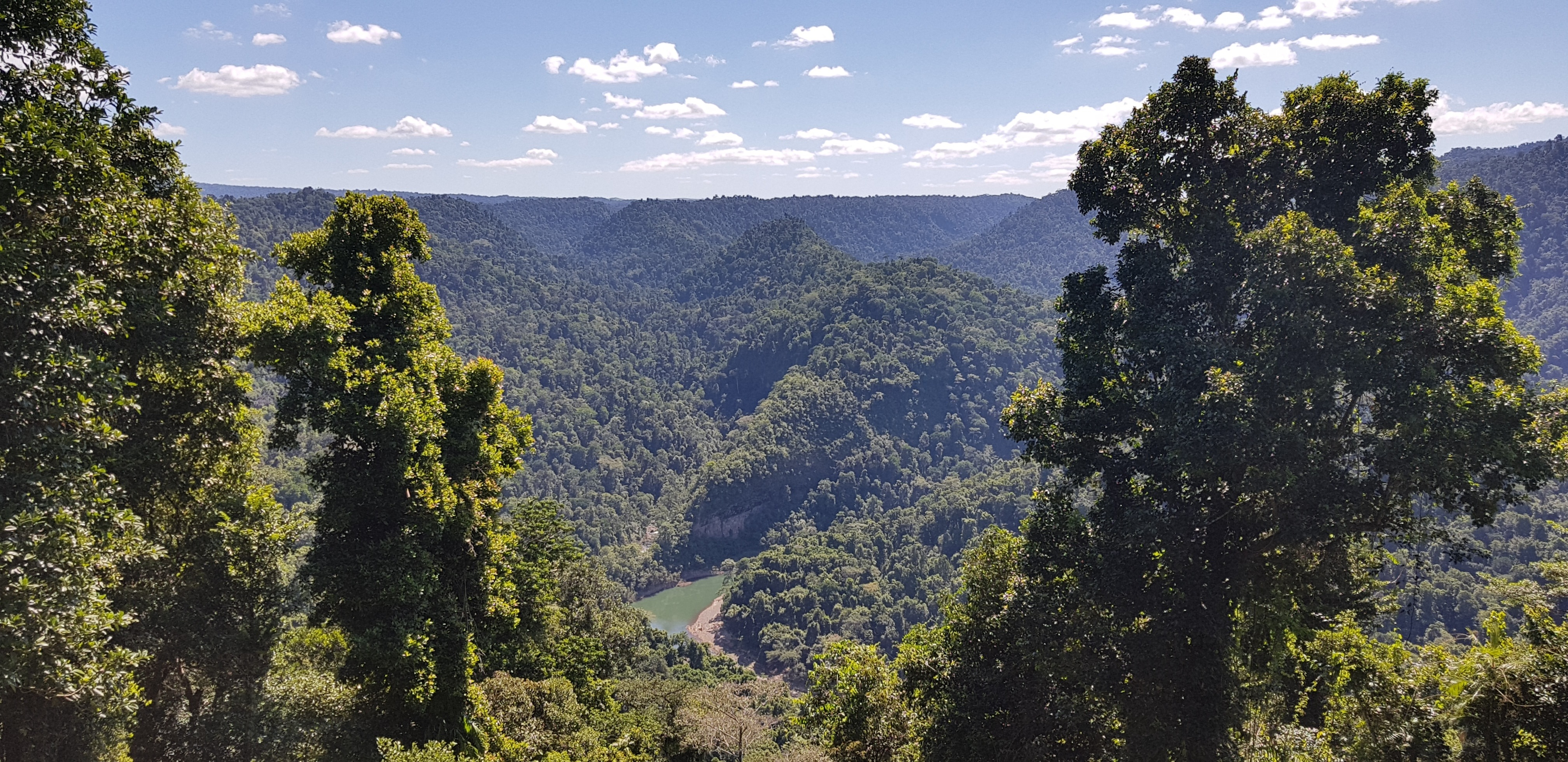 The view from the top of the walking track down to Wallaman falls