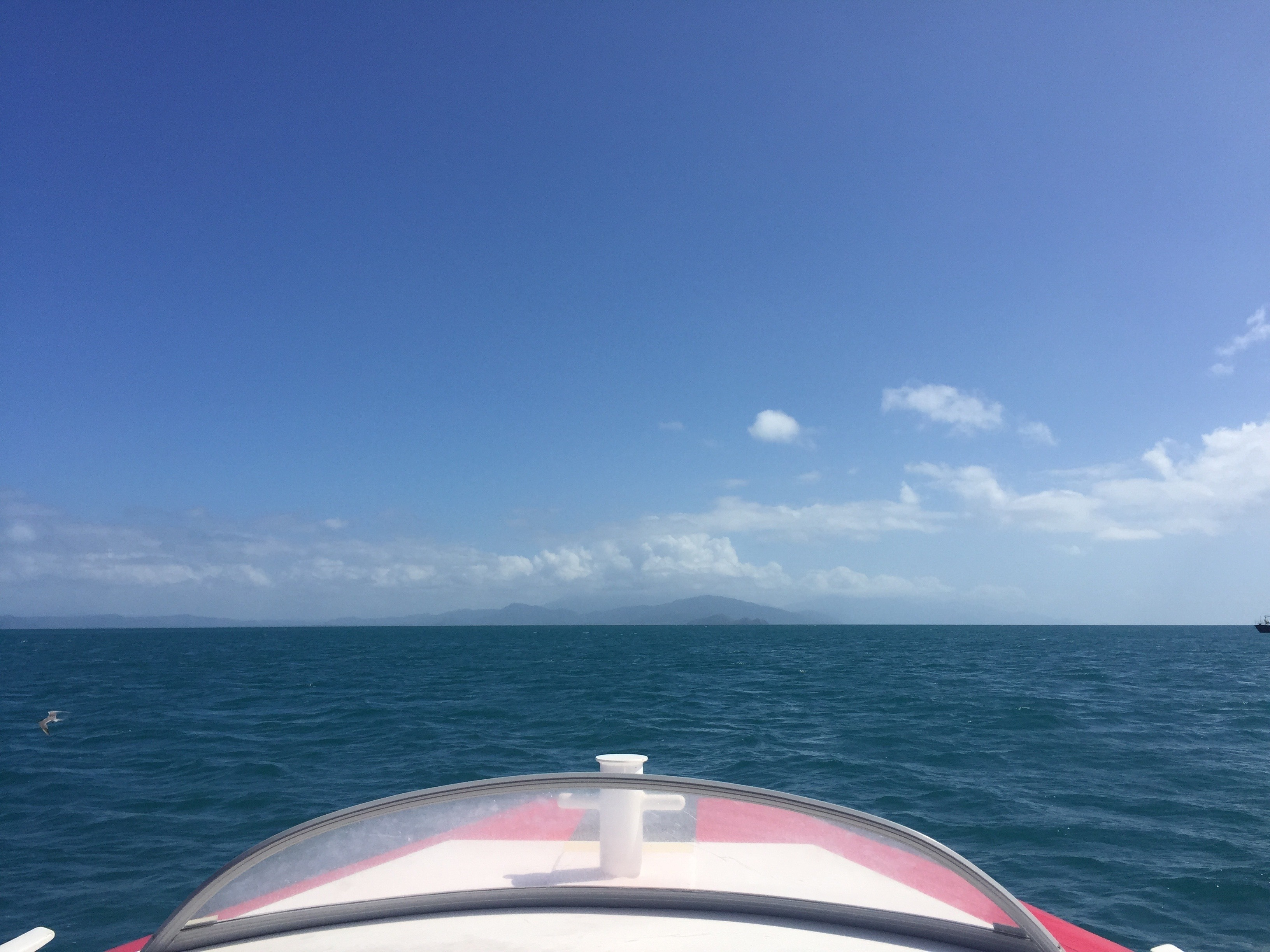 Floating by Low Isles in the Great Barrier Reef - Queensland