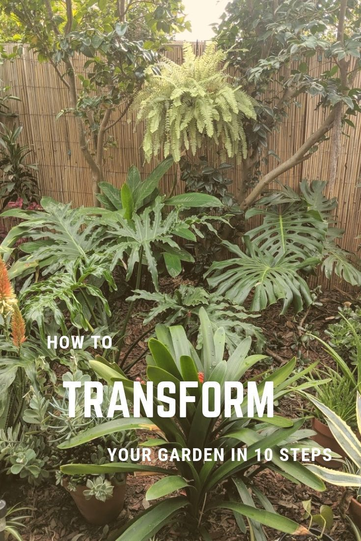 How to transform your garden